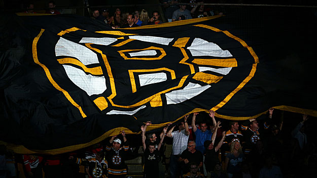 bruins-flag